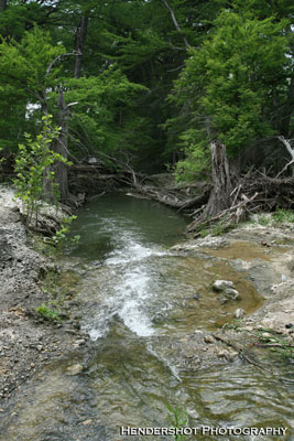 Brushy Hill Ranch has an abundance of water sources like this beautiful creek. These water resources allow the ranch to sustain a large, and healthy, herd of trophy whitetail deer, Rio Grande Turkey and wild hogs/boars! Brushy Hill offers the most affordable trophy whitetail bow hunting in Texas. Book your next bowhunt at Brushy Hill Ranch!